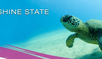 Hawaii Roundtrip From $250