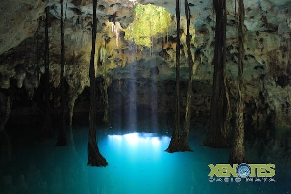 Luum Earth cenote at Xenotes Oasis Maya Traveling Well For Less