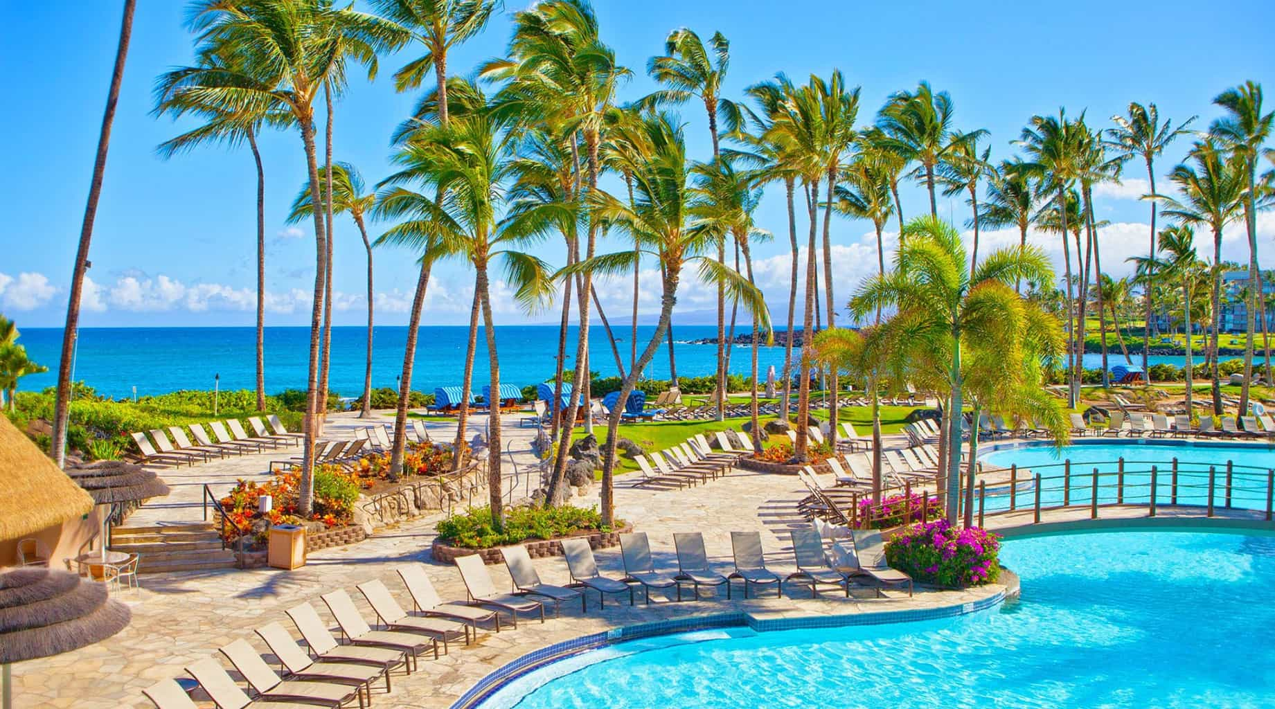 Hilton Waikoloa Village Traveling Well For Less