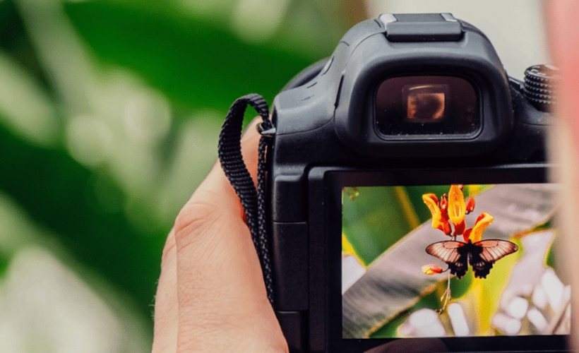Improve your photo skills with free photography classes. http://www.travelingwellforless.com/go/UltimatePhotographyBundle