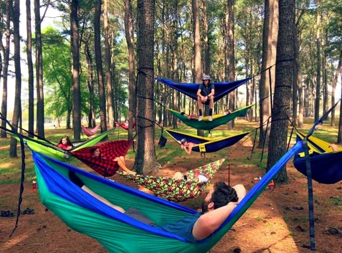 Hammocks dot the landscape in Joe Wheeler Park. | 25 reasons to visit Florence, Alabama. | Photo courtesy of VisitFlorenceAl.com | TravelingWellForLess.com