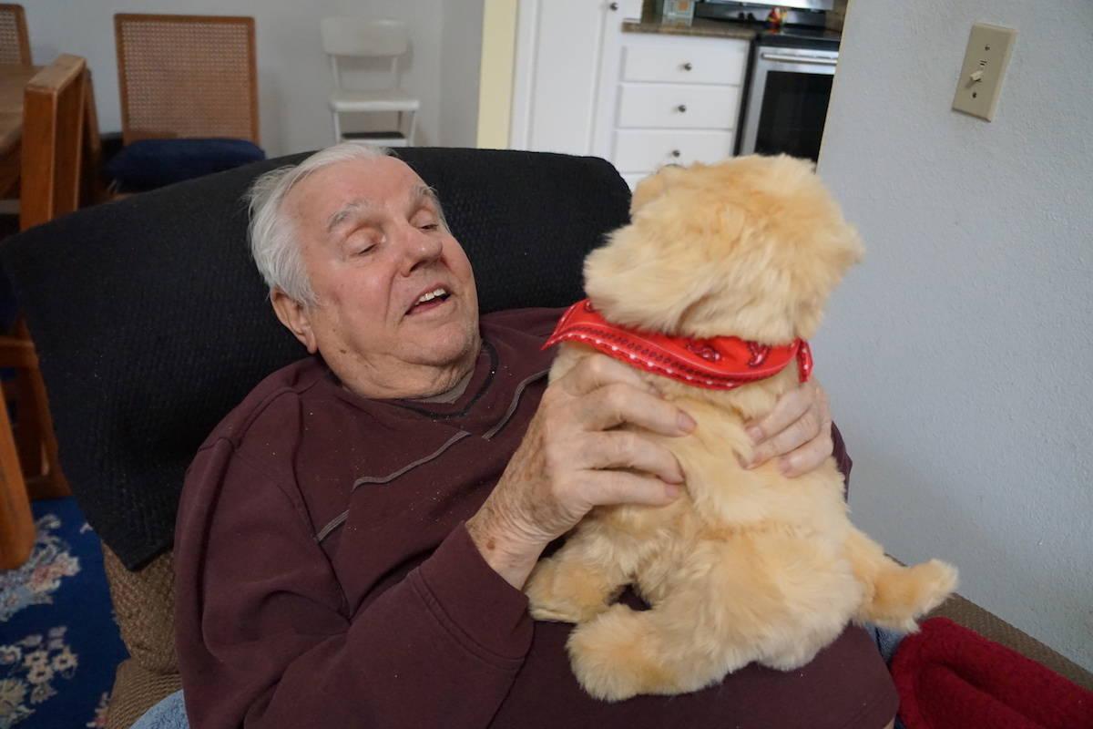Hasbro's Joy For All Companion Pet, Golden pup, a comfort golden retriever provides companionship for the elderly. http://www.travelingwellforless.com