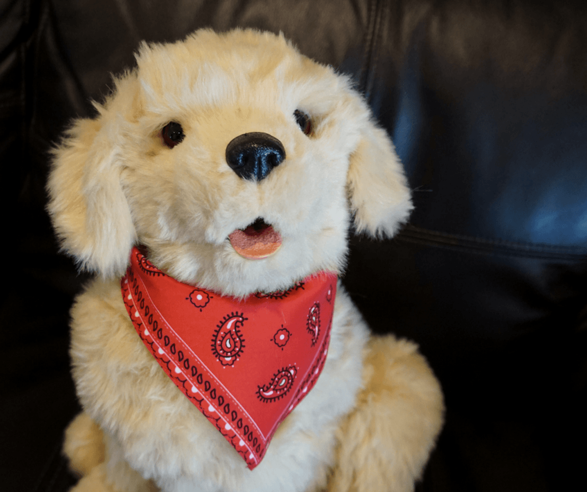 A comfort golden retriever is a solution to the emotional support animal debate. Hasbro Joy For All Companion Pet. golden pup. http://www.travelingwellforless.com