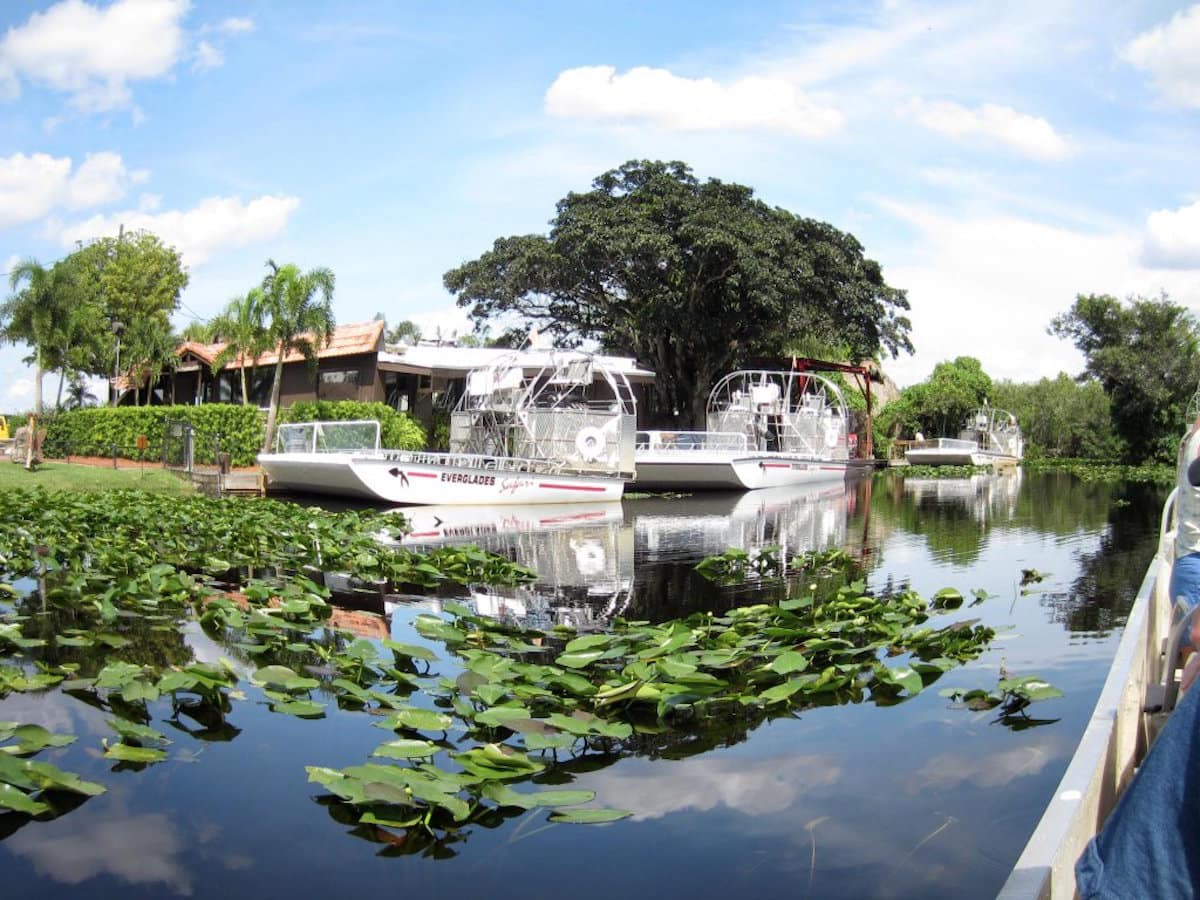Take a ride on an airboat through the Everglades during a layover in Miami. | things to do in Miami | what to do during a layover at the Miami Airport | TravelingWellForLess.com