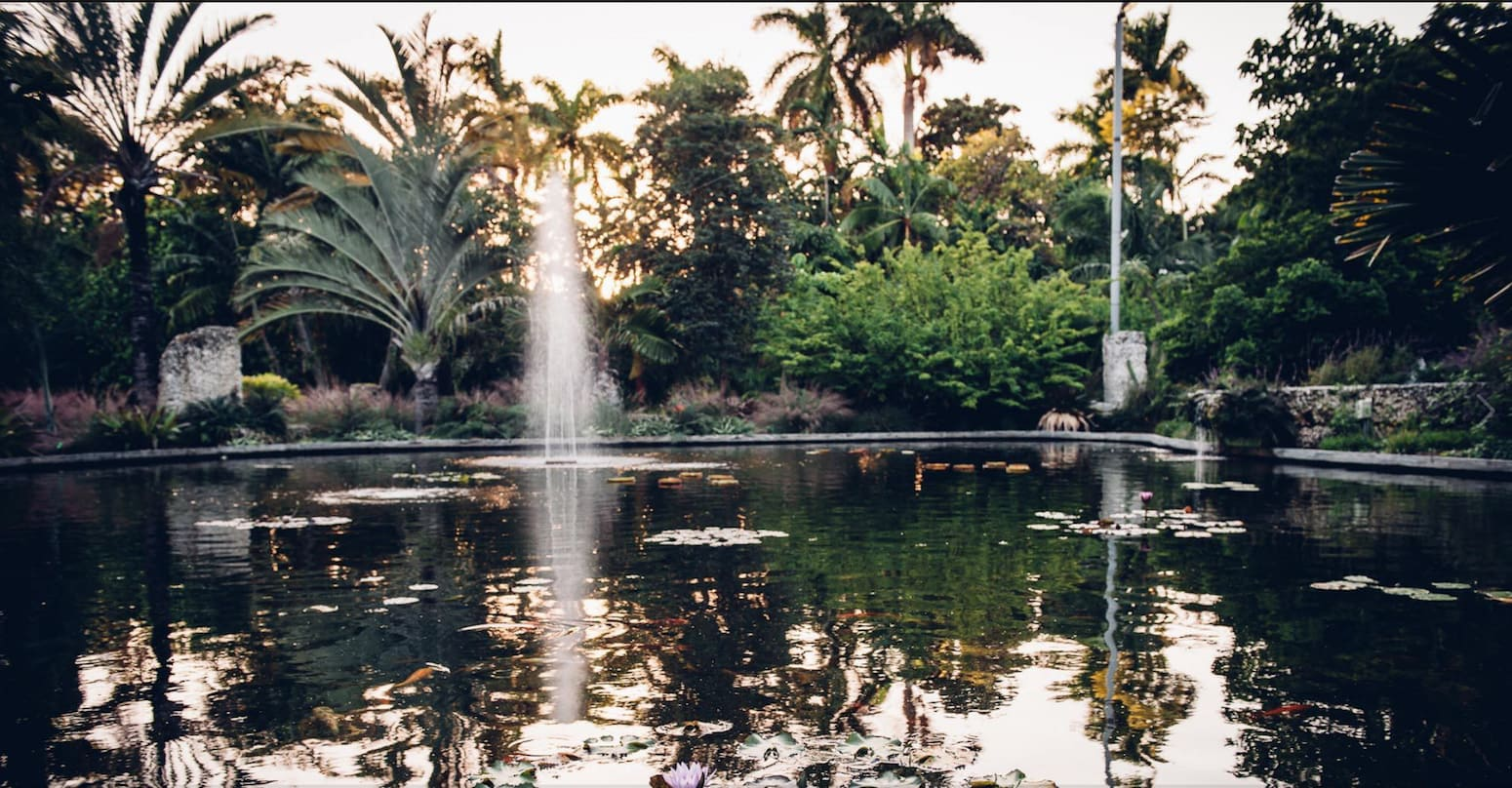 Legs stiff from a cramped airline seat? Stretch them out with a stroll through the Miami Beach Botanical Garden. | what to do on a 5-hour layover in Miami | TravelingWellForLess.com