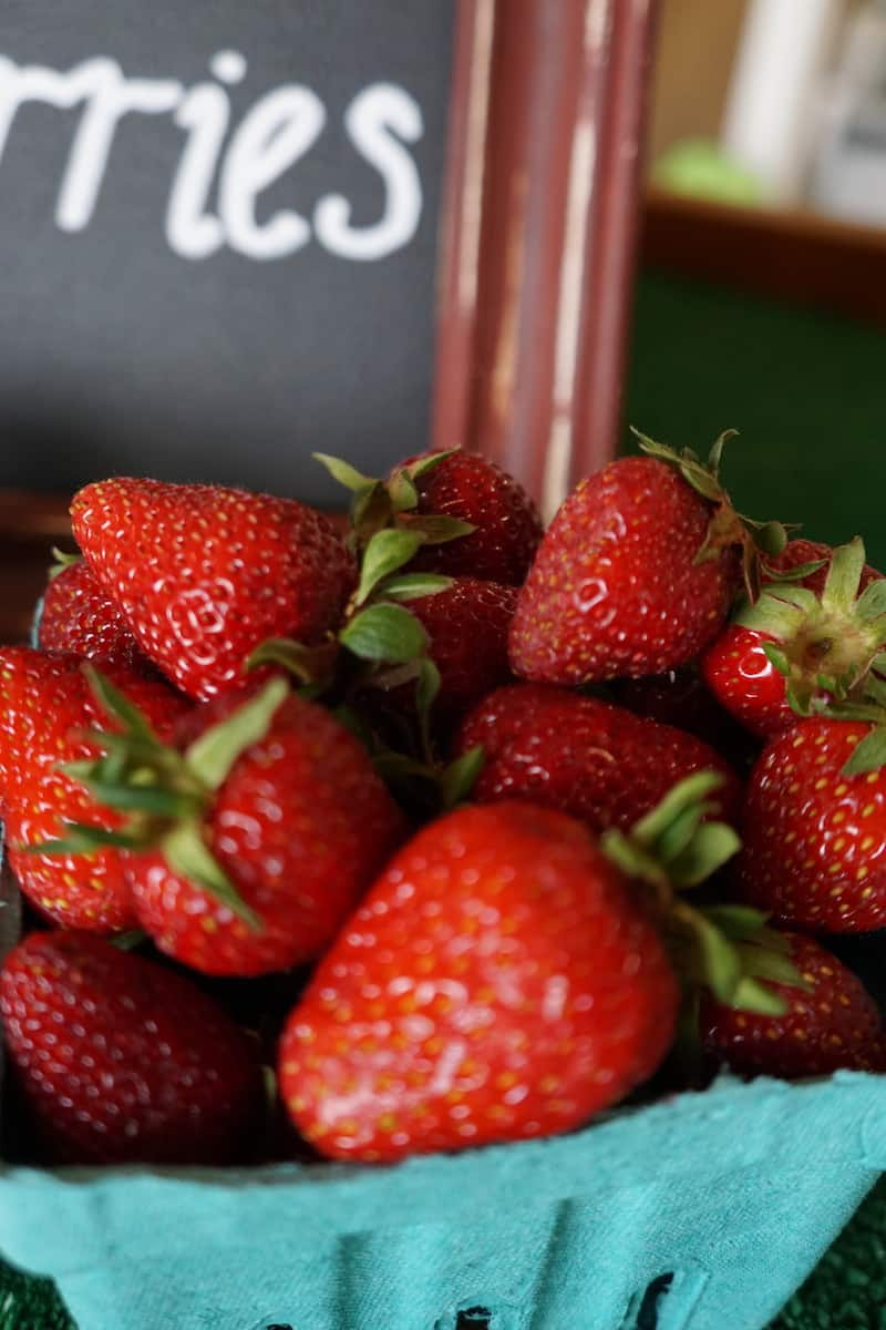 Visiting Unger Farms is one of several things to do with kids in Tualatin. Plan your visit around harvest season and pick your own strawberries. | #tualatin #familyfun #thingstodowithkids #oregon #strawberries https://www.travelingwellforless.com