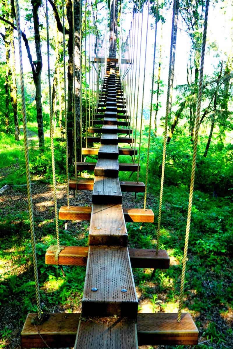 Do you love Tarzan's Treehouse at Disneyland? Or the Swiss Family Treehouse at Disneyworld? Then you'll love Tree to Tree Adventure Park. You can zip line, rappel, and bungee jump to your heart's content. | #tualatin #familyfun #thingstodowithkids #oregon #strawberries https://www.travelingwellforless.com