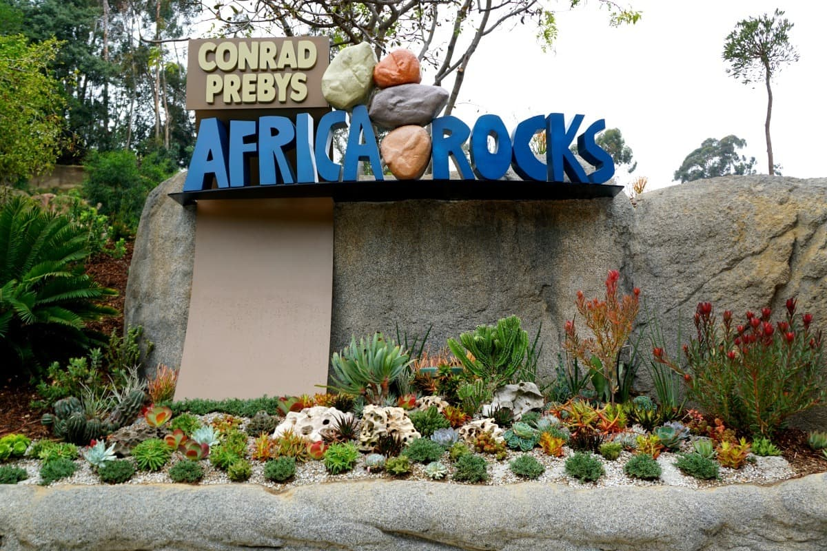 africa rocks a little slice of africa in the heart of san diego