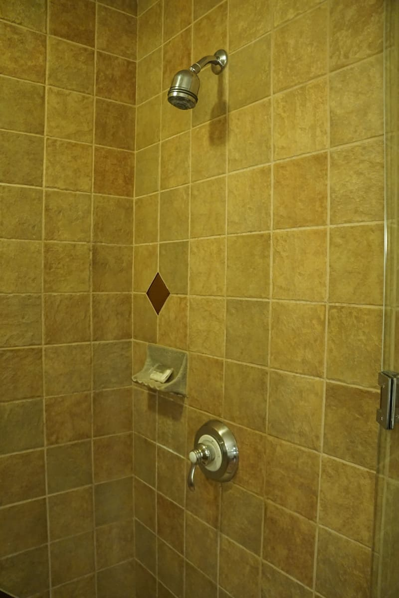 The tiled shower is large