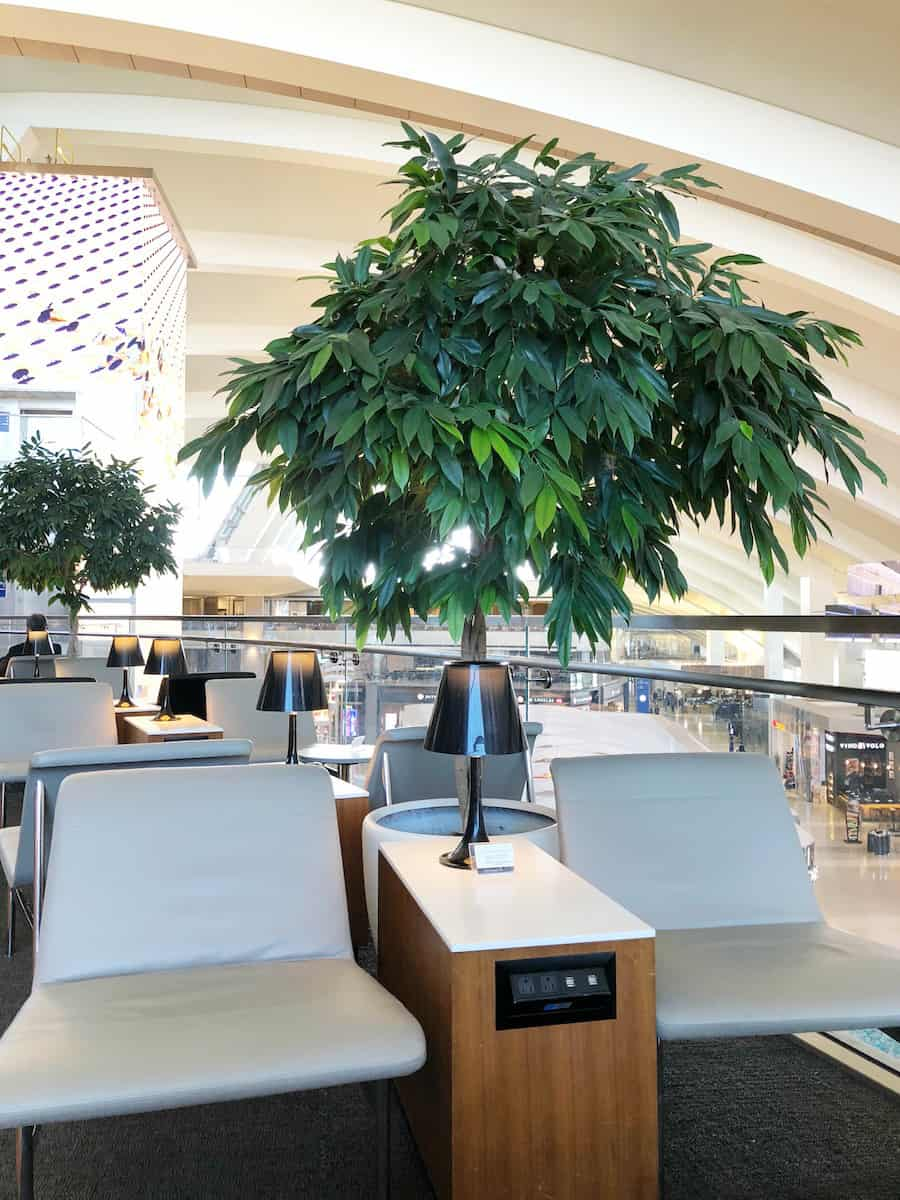 atrium terrace seating Star Alliance Business Class lounge LAX