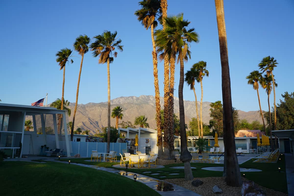 Palm trees and San Jacinto mountains