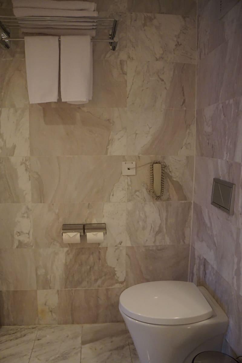 hotel room toilet