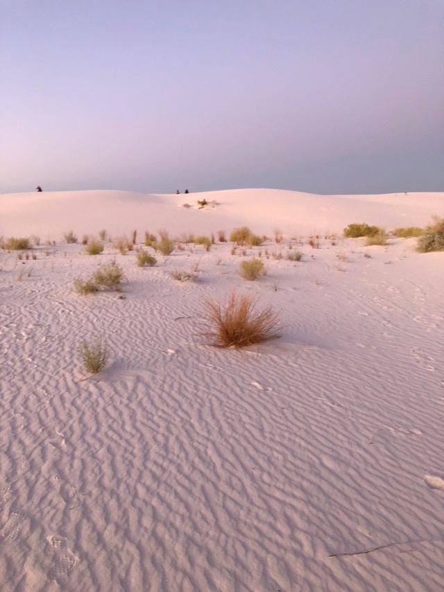 gypsum white sand dunes at sunset at White Sands National Park