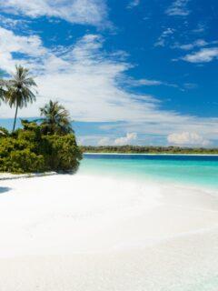 shore during daytime; white sand beach tropical island