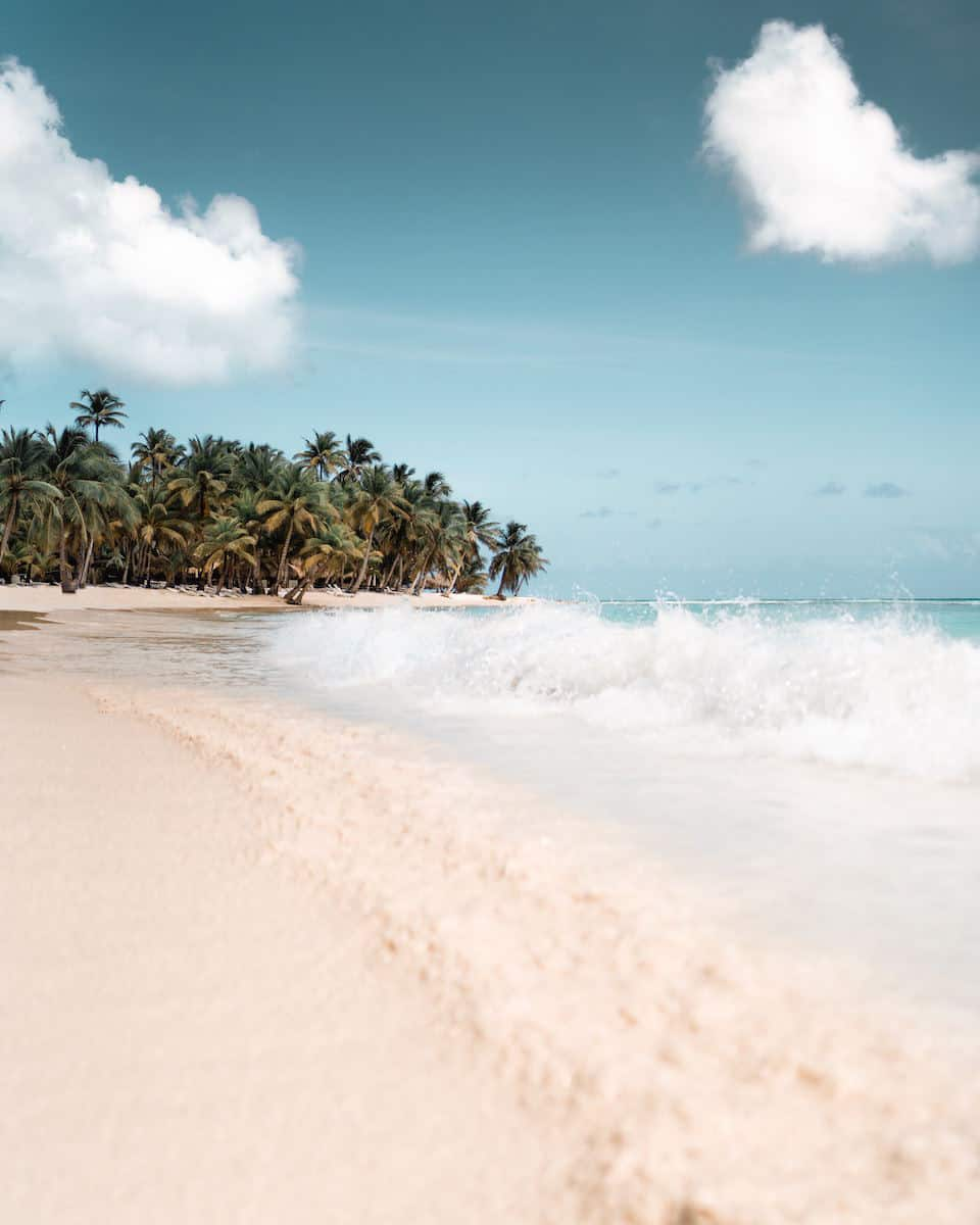 waves crashing on white sand beach in Dominican Republic, palm tress in background