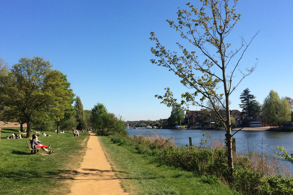 view of walking path for river thames walk from Kingston to Hampton Court Palace